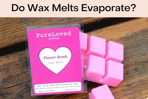 Do Wax Melts Evaporate